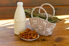 Ingredienti della minestra del latte del fungo Fotografia Stock