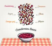Ingredienti della salsa di mirtilli rossi di vettore che cadono Immagini Stock