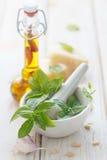 Ingredienti della salsa di Pesto Fotografie Stock Libere da Diritti
