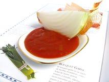 Ingredienti della salsa di pomodori Fotografia Stock Libera da Diritti