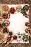 Ingredienti della spezia e dell'erba Immagine Stock