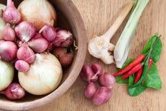 Ingredienti di alimento caldi e piccanti asiatici Immagini Stock Libere da Diritti