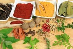 Ingredienti di cucina Immagine Stock