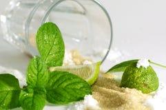 Ingredienti di Mojito Immagine Stock