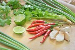 Ingredienti di verdure Fotografia Stock Libera da Diritti
