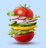 Ingredienti di volo dell'hamburger del vegano immagini stock libere da diritti