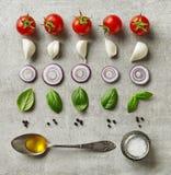 Ingredienti freschi dell'insalata Immagine Stock Libera da Diritti
