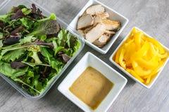 Ingredienti freschi dell'insalata di pollo Fotografia Stock Libera da Diritti