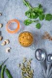 Ingredienti indiani della pasta di curry immagini stock