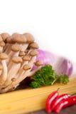 Ingredienti italiani della salsa di funghi e della pasta Fotografie Stock