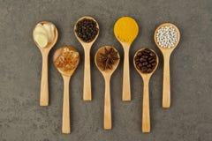 Ingredienti naturali della stazione termale Varietà di erbe su fondo rustico da Fotografie Stock Libere da Diritti