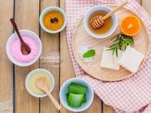Ingredienti naturali sale marino, tanaka, aloe vera, arancia, ROS della stazione termale Immagini Stock Libere da Diritti