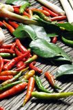 Ingredienti per alimento tailandese fotografie stock libere da diritti