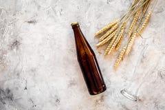 Ingredienti per birra Orzo da maltaggio vicino ai vetri ed alla bottiglia di birra sul copyspace grigio di vista superiore del fo fotografia stock