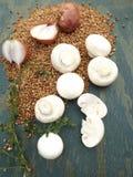 Ingredienti per grano saraceno Immagine Stock Libera da Diritti