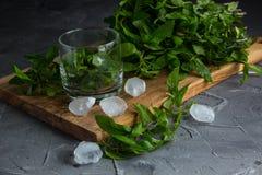 Ingredienti per il liquore della menta Immagini Stock Libere da Diritti