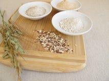 Ingredienti per il pane di segale con la miscela della farina di segale, dei chicchi, del lievito naturale e del seme Fotografia Stock Libera da Diritti