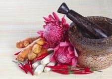 Ingredienti per il piatto asiatico speciale - pedas di Asam fotografie stock