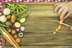 Ingredienti per la carota del taglio della minestra e della donna di estate con il coltello Fotografia Stock