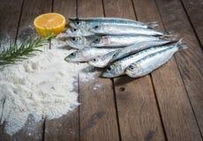 Ingredienti per la frittura delle sardine Fotografia Stock