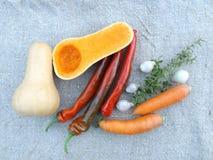 Ingredienti per la minestra della zucca Fotografie Stock Libere da Diritti