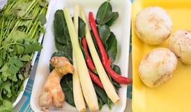 Ingredienti per la minestra tailandese di Tom Yam della minestra fotografie stock