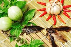 Ingredienti per la salsa di peperoncino rosso dell'errore di programma di acqua gigante Immagini Stock