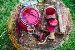 Ingredienti per le barbabietole marinate di estate Fotografia Stock