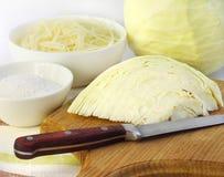 Ingredienti per produrre crauti Fotografia Stock