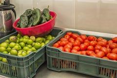 Ingredienti per salsa calda fotografia stock