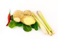 Ingredienti principali della minestra asiatica piccante con il piatto piccante dell'igname dello zenzero del peperoncino e di Tom fotografia stock libera da diritti