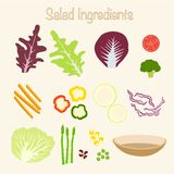 Ingredienti sani dell'insalata Fotografia Stock