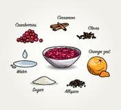 Ingredienti schizzati della salsa di mirtilli rossi Immagini Stock Libere da Diritti