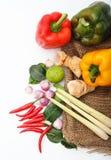 Ingredienti tailandesi del condimento dell'alimento di Tomyum su fondo bianco Fotografie Stock Libere da Diritti