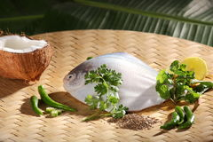 Ingredients for baked/steamed Parsi fish. Stock Images