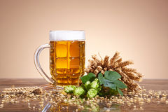 Ingredients and beer in a glass Royalty Free Stock Image
