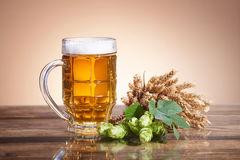 Ingredients and beer in a glass Royalty Free Stock Photography