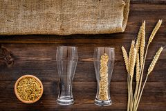 Ingredients for beer. Malting barley in beer glass on wooden background top view.  Stock Photography