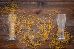 Ingredients for beer. Malting barley in beer glass on wooden background top view.  Royalty Free Stock Image