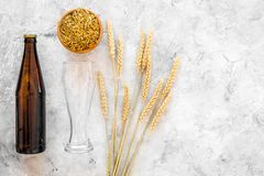 Ingredients for beer. Malting barley near beer glasses and bottle on grey background top view copyspace. Ingredients for beer. Malting barley near beer glasses Stock Photography