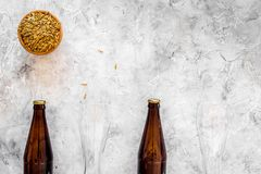 Ingredients for beer. Malting barley near beer glasses and bottle on grey background top view copyspace. Ingredients for beer. Malting barley near beer glasses Royalty Free Stock Image
