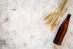Ingredients for beer. Malting barley near beer glasses and bottle on grey background top view copyspace. Ingredients for beer. Malting barley near beer glasses Stock Photos