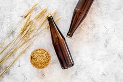 Ingredients for beer. Malting barley near beer glasses and bottle on grey background top view copyspace. Ingredients for beer. Malting barley near beer glasses Royalty Free Stock Images