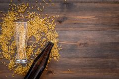 Ingredients for beer. Malting barley near beer bottle and glass on wooden background top view copyspace. Ingredients for beer. Malting barley near beer bottle Stock Photo