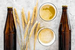 Ingredients for beer. Malting barley near glasses of beer on grey background top view.  Stock Photography