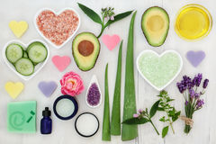 Ingredients for Body and Skin Health Care Royalty Free Stock Photography