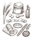 Ingredients and bread set. vector illustration