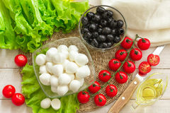 Ingredients for Caprese salad Stock Photography