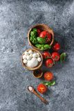 Ingredients for caprese salad Royalty Free Stock Photo