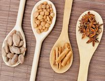 Ingredients for chocolate, cocoa beans, cinnamon, anise, apricot beans on wooden spoons stock photo